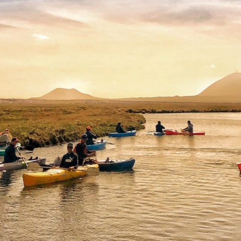 Kayaking – Los Humedales