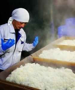 Steaming rice for making Sanran