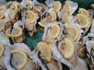 """本日から幻の『あまころ牡蠣』販売開始!南三陸町で食べられるのは""""ロイヤルフィッシュ""""と""""弁慶鮨""""だけ!"""