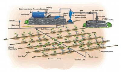 drip_irrigation_hindi