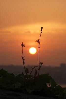 Donosti SunRise