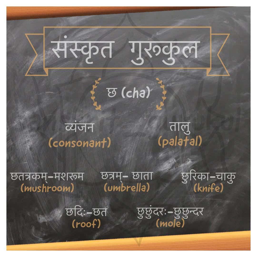 Sanskrit consonant छ (cha)
