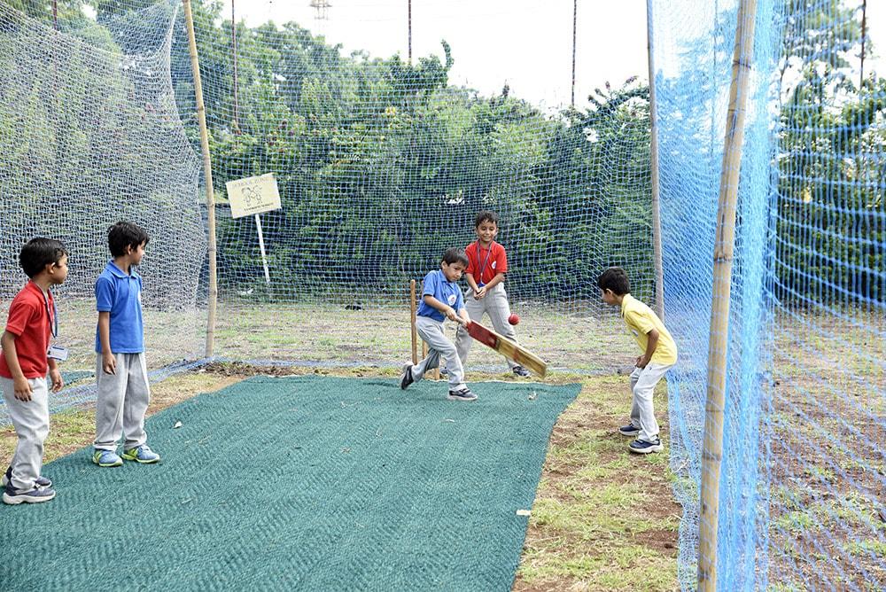 Cricket Session