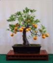gsbf-tree