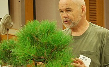 "Ted Matson instructing on ""five qualities of bonsai line""."