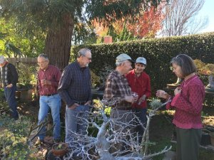 Read more about the article December 2016 – Annual Christmas Potluck