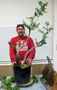 Read more about the article October 2017 – Bob Pressler – Show Tree Part Two