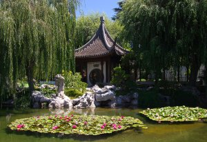 Read more about the article August 2020 – Day At The Huntington's Chinese Garden