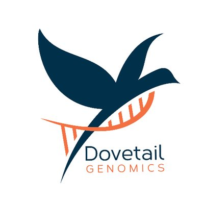 Dovetail Genomics: The human genome is far more dynamic, complex, revealing, fascinating than ever imagined