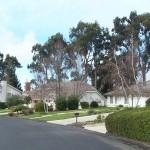 Elkhorn Estate