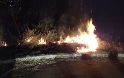 Trio é detido e diz que colocou fogo em mato por diversão