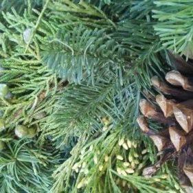 Close up Chiristmas Wreath Pine Cone