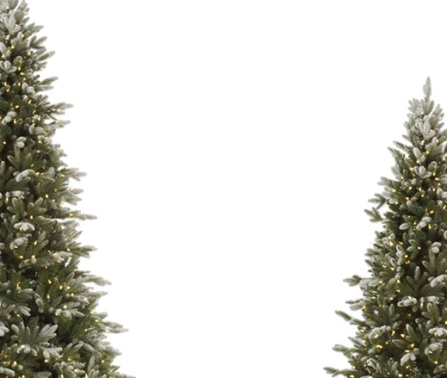 Frosted Artificial Christmas Trees