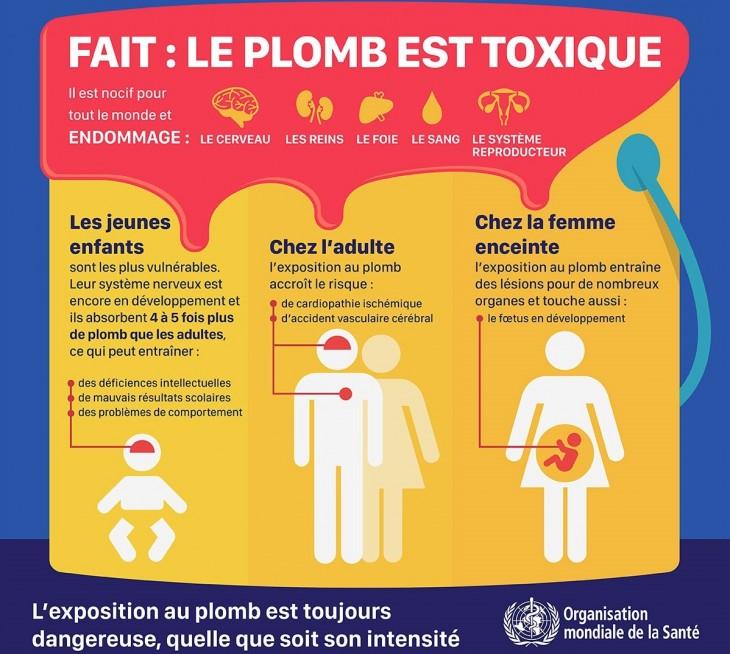 Intoxication Au Plomb Dangers Et Prvention Conseils