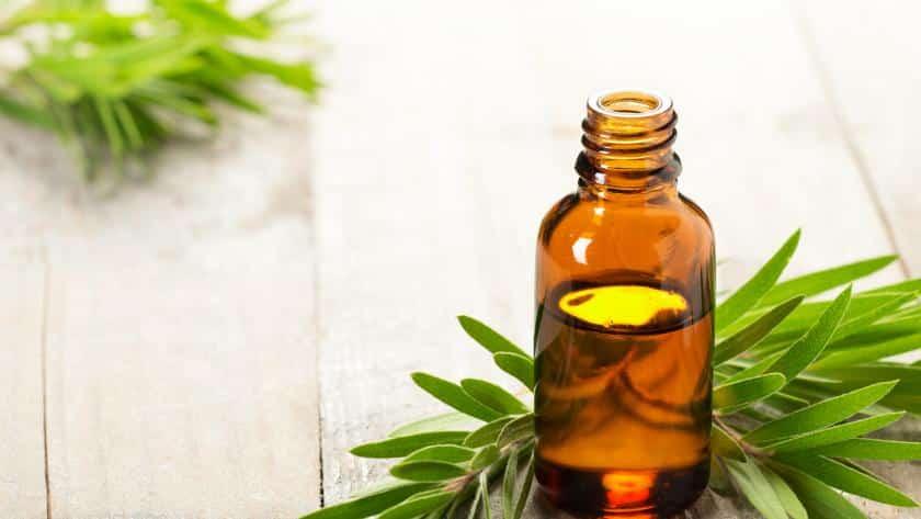 Comment traiter les infections sexuellement transmissibles en utilisant l'huile d'arbre à thé