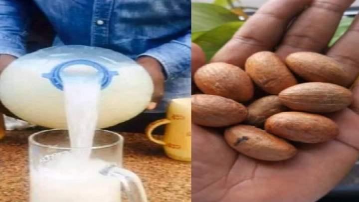 Remède naturel faiblesse sexuelle (Bitter Kola et vin de palme fermenté)