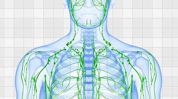 4 façons de garder votre système lymphatique en santé