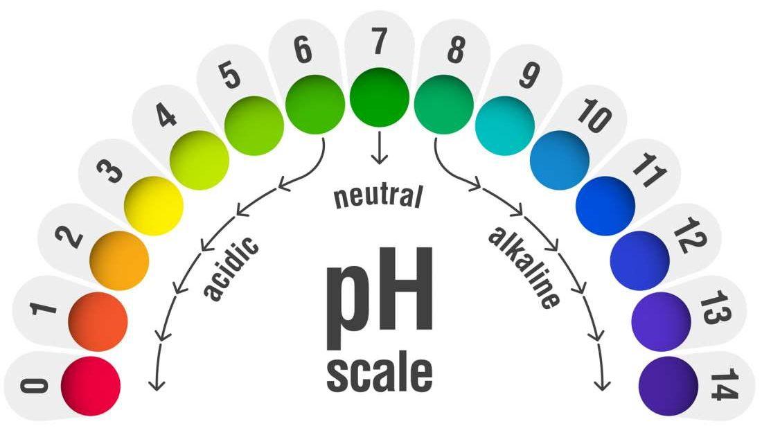 Le pH vaginal est un facteur dans le choix du sexe. vrai ou faux?