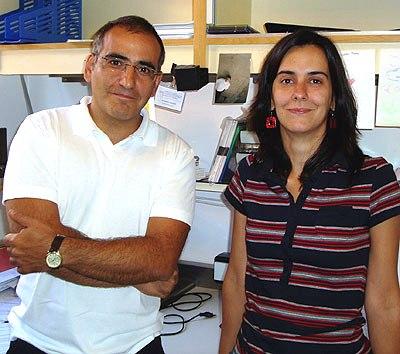 Científica santistebeña en el CSIC