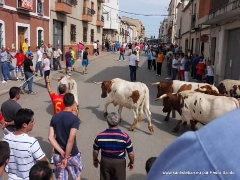 Sábado Pascuamayo - Banderita y Encierro 2011