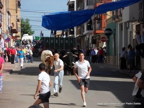 Encierros 2012. Primer toro.
