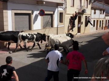 Encierros 2012. Segundo toro.