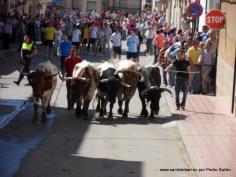 Encierros Domingo Pascuamayo 2012
