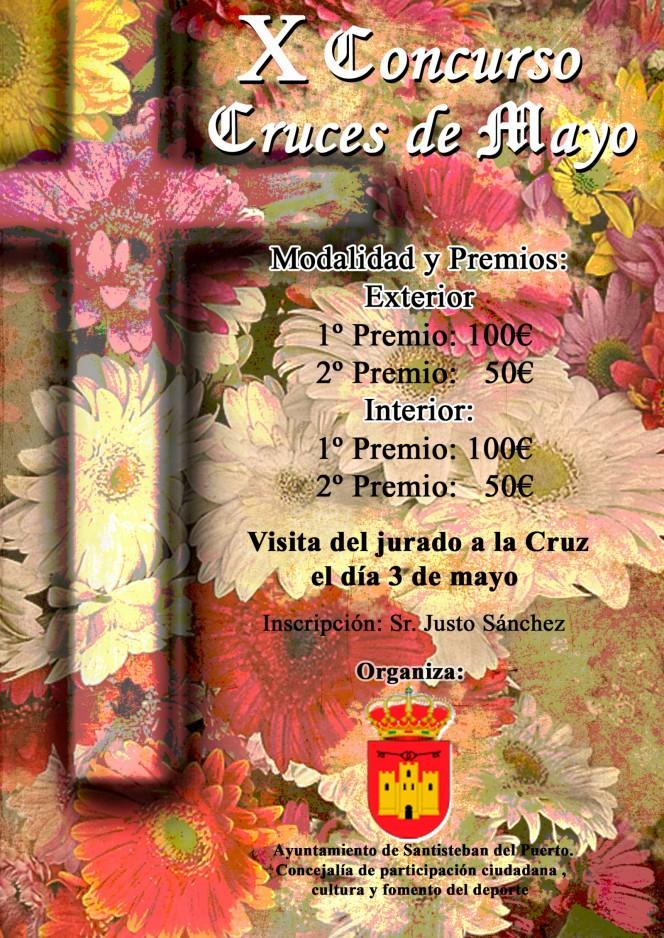 Cartel X Concurso de Cruces de Mayo 2013