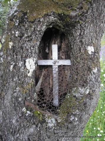 Cruz donde oraba el ilustre D. Paco Clavijo Guerrero