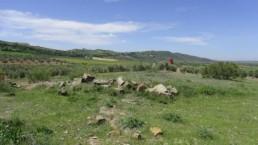Fuente del Portichuelo (Ruinas)