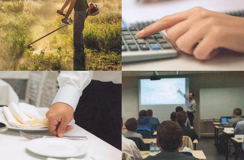 Nuevos cursos del Servicio de Empleo del Ayuntamiento de Murcia