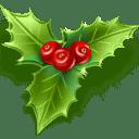 1384955921_mistletoe