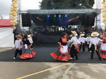 Festival Artistico Colegio San Via (16)