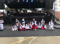 Festival Artistico Colegio San Via (3)