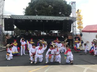 Festival Artistico Colegio San Via (46)