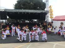 Festival Artistico Colegio San Via (48)