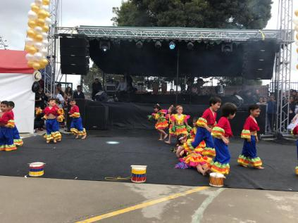 Festival Artistico Colegio San Via (7)