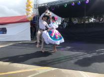 Festival Artistico Colegio San Via (73)