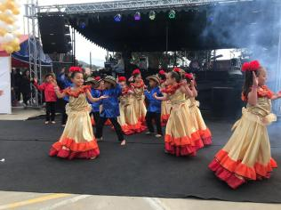 Festival Artistico Colegio San Via (80)