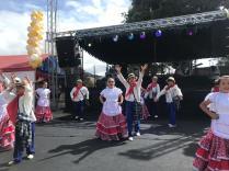 Festival Artistico Colegio San Via (83)