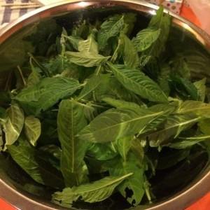 Indigo flesh leaves in a bowl
