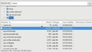 FTP remote site in FileZilla