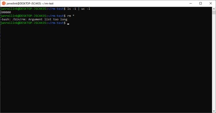 -bash: /bin/rm: Argument list too long