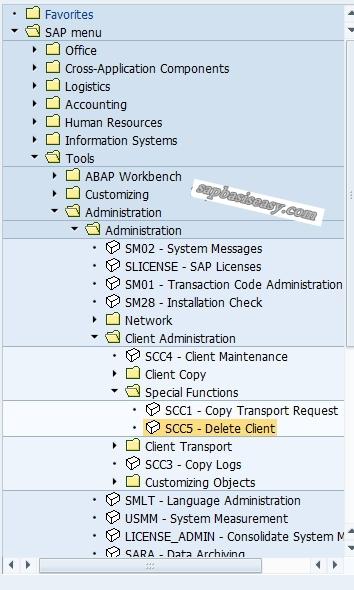 Delete SAP Client