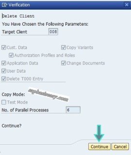Summary screen in SAP Client Deletion