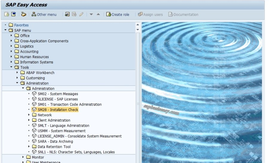 SAP-initial-consistency-check