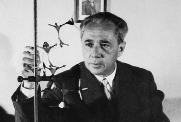 Giulio Natta, chimico