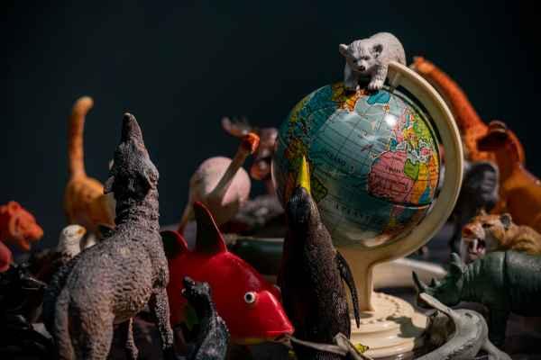 """""""Saluti dalla Terra"""" ha coinvolto anche il gruppo Friday for future di Reggio Emilia"""