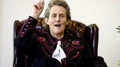 Temple Grandin, una delle più famose personalità affette da disturbo dello spettro autistico nella sua variante ad alto funzionamento detta sindrome di Asperger