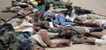 Offensiva Boko Haram in Nigeria, 2000 morti?